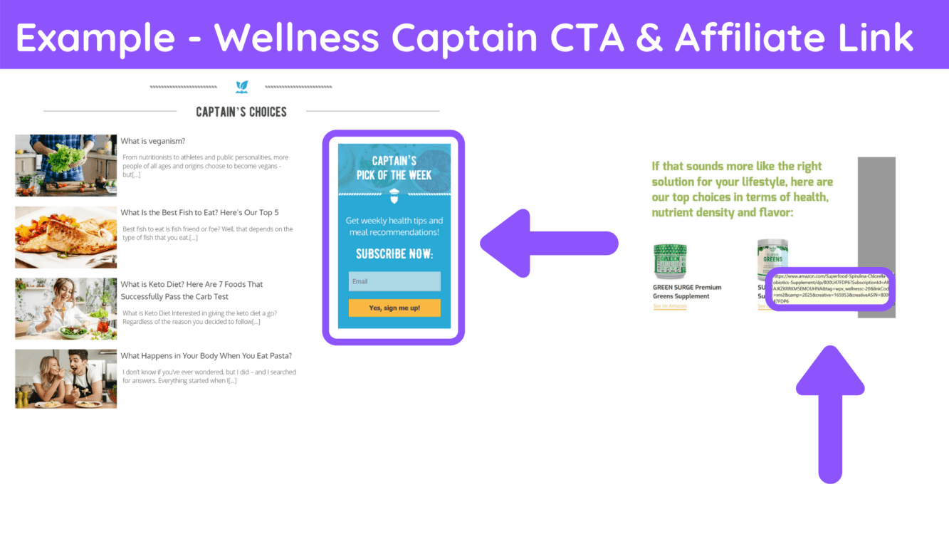 wellness captain sign up, newsletter affiliate marketing, can i use affiliate links in newslettr, newsletter amazon associates, newsletter affiliate ads
