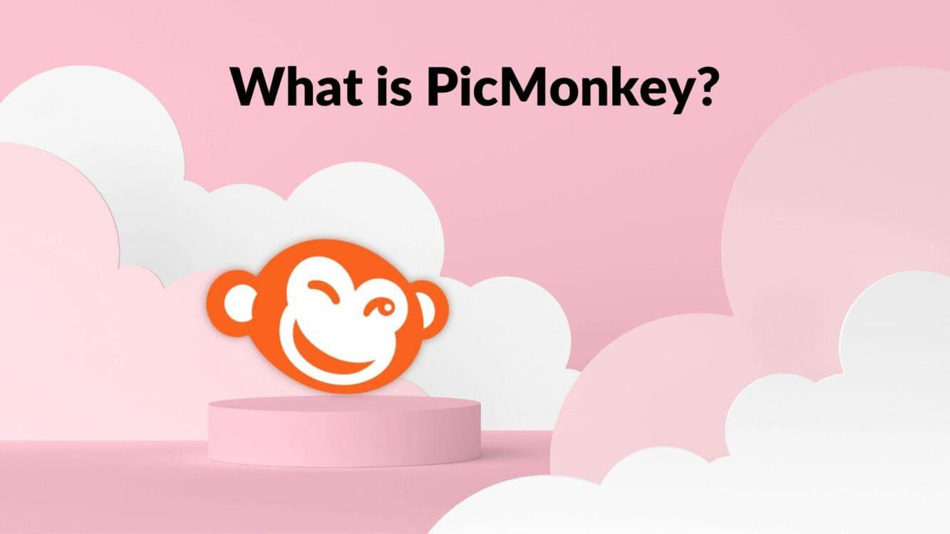 What is PicMonkey, picmonkey review, picmonkey icon, picmonkey vs canva, canva vs picmonkey, how to use picmonkey, picmonkey review